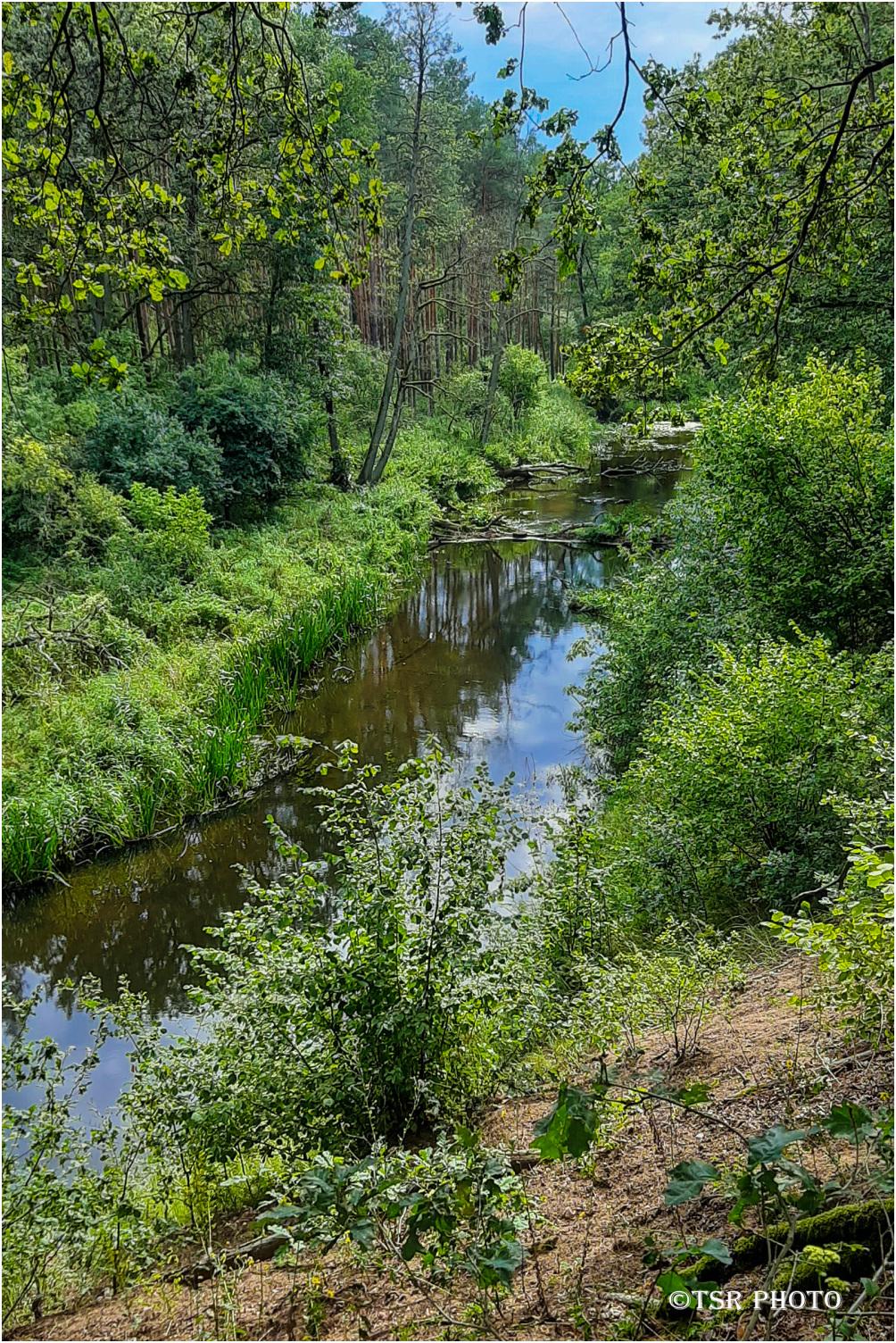 Wełna River 3