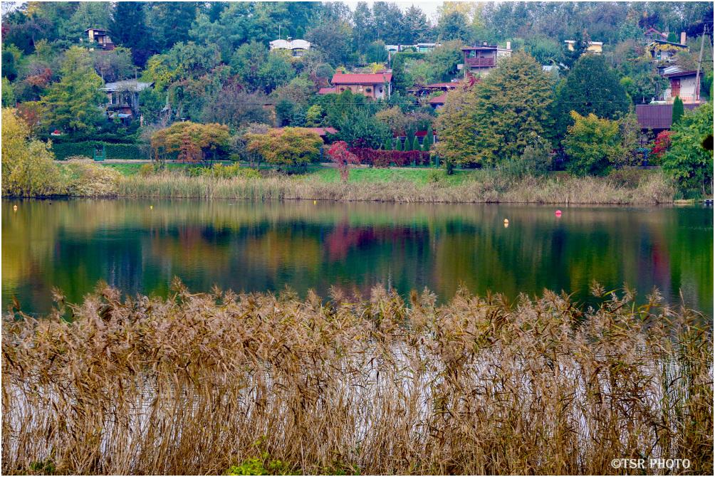 Around the Lake 4