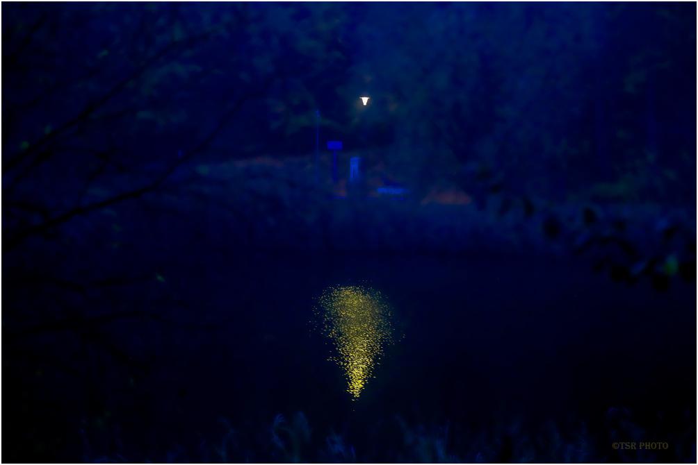 Darkness is blue (sometimes)