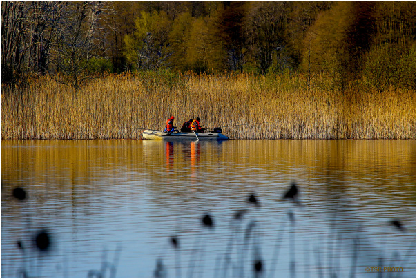 Anglers in action