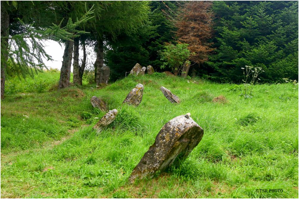 Old Jewish Cemetery 2/4