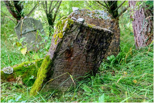 Old Jewish Cemetery 3/4