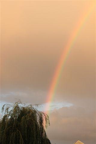 Regenboog aan een hemel met vreemde kleur.