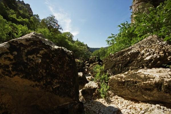 Ambiance de Canyon