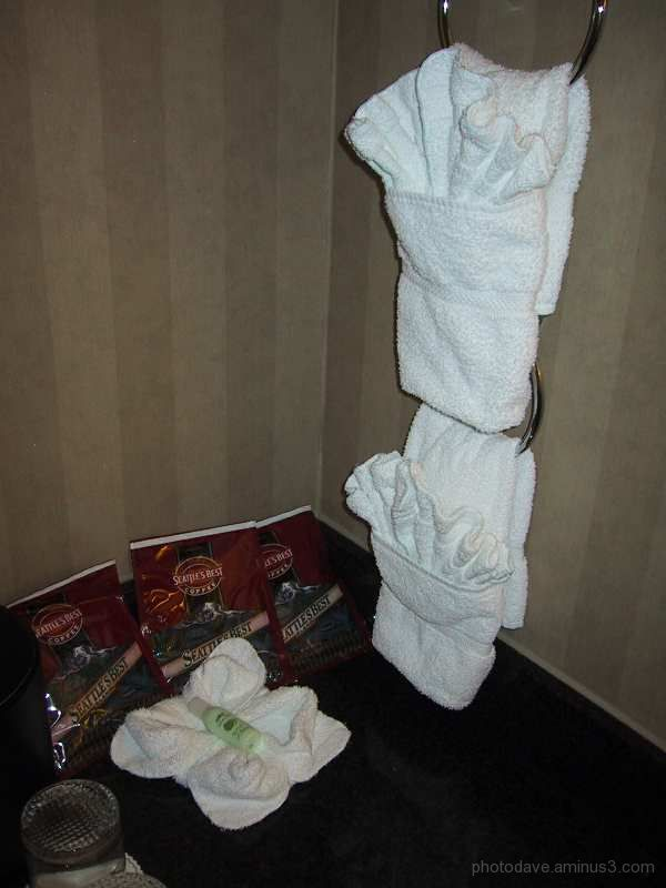 Towel Art