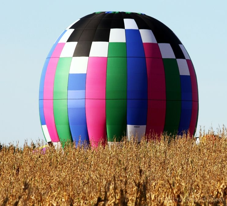 Balloon Rises over Iowa Cornfield