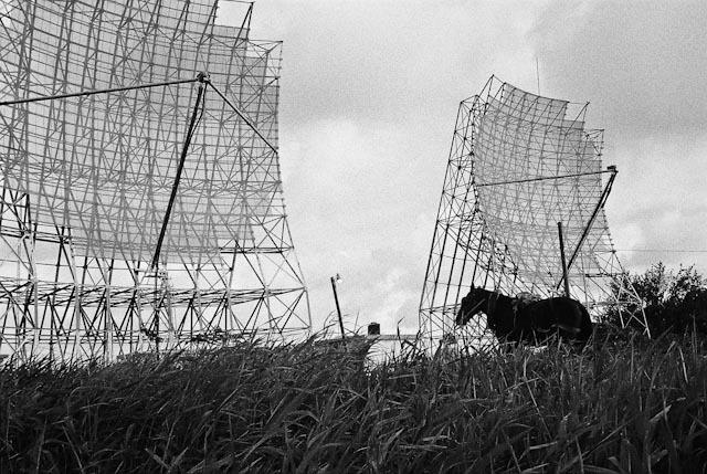 Horse on radars