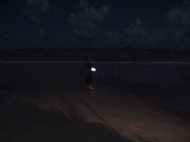Nuit de tortue #1 (pleine lune)