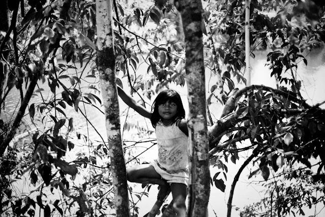 La petite fille dans les arbres