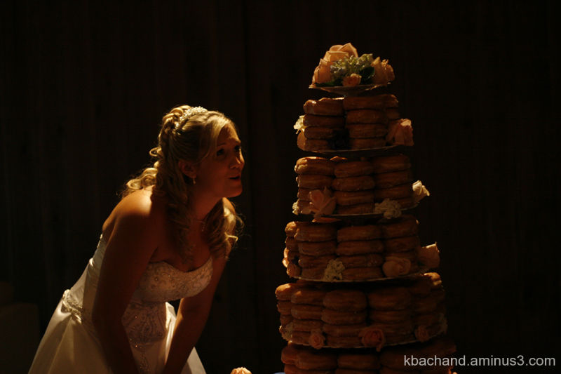 Awesomest Wedding Cake Ever