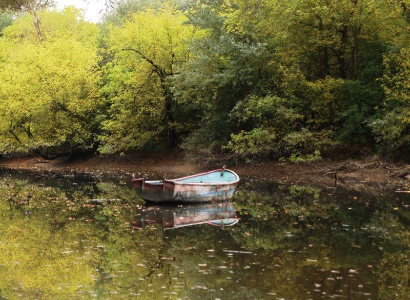 Boat on Bellenkrappen, Rhein