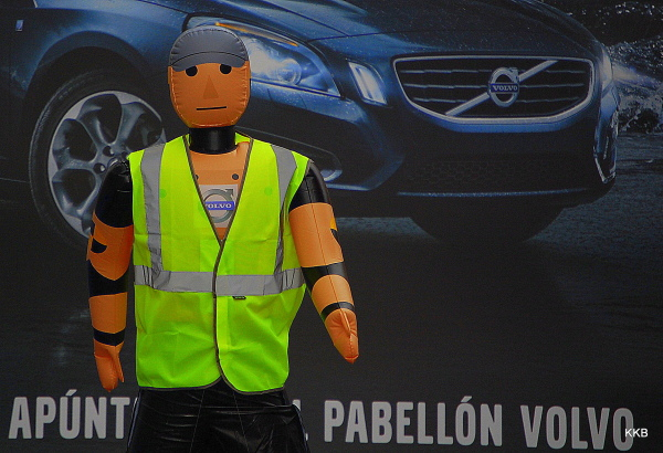 The Volvo Guy