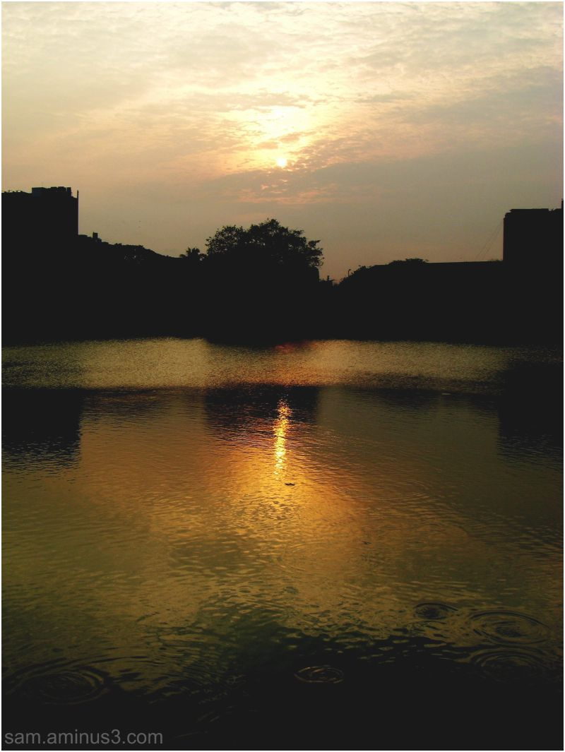 Sunset Mylapore Tank