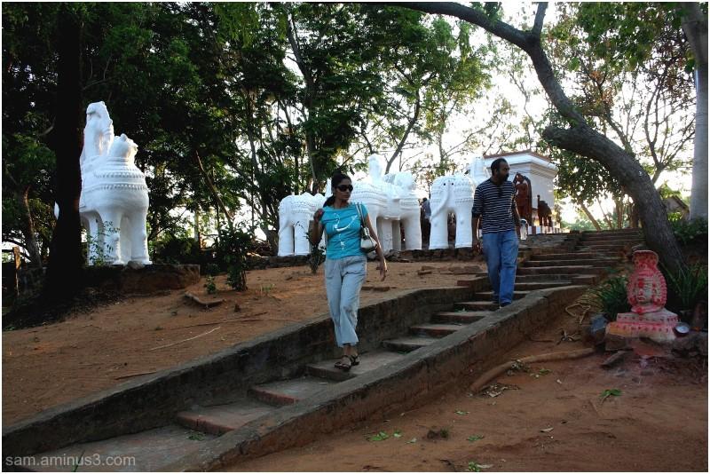 Dakshina Chitra Chennai