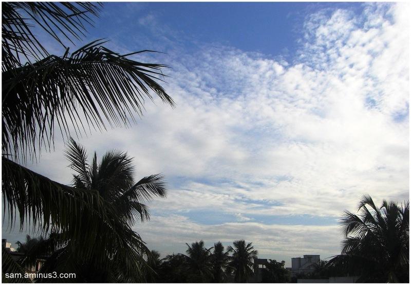 Evening sky in Chennai
