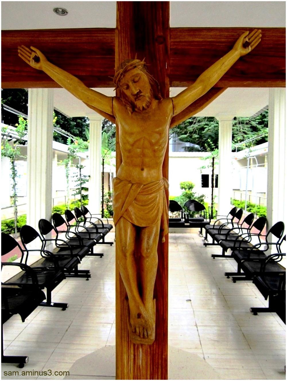 Jesus on Cross - Vision Divine