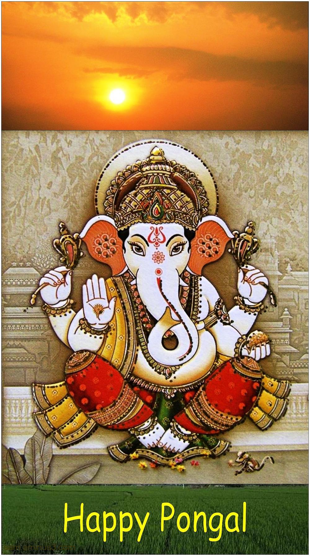 Pongal Greetings