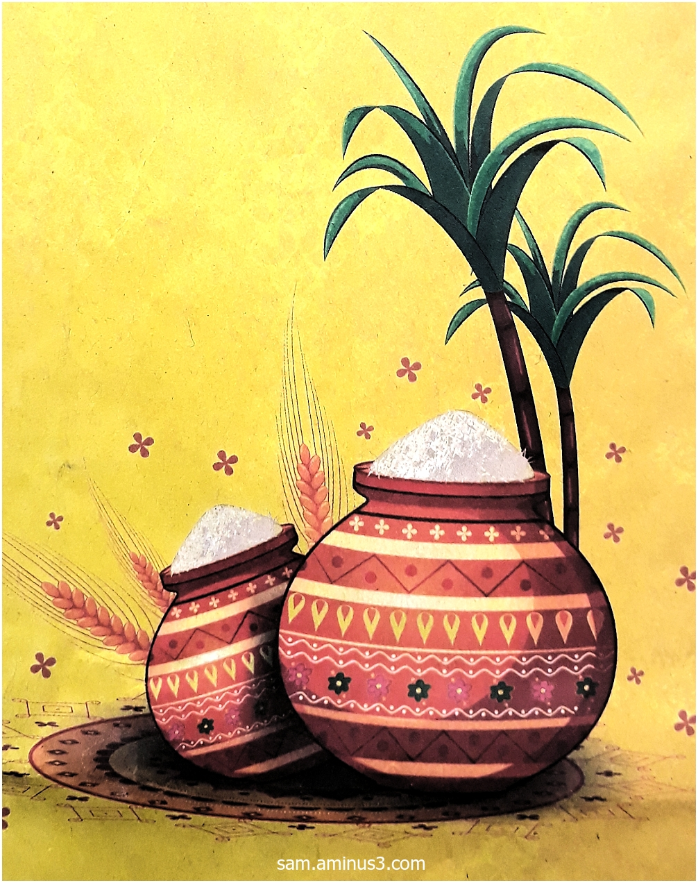 Pongal Colours