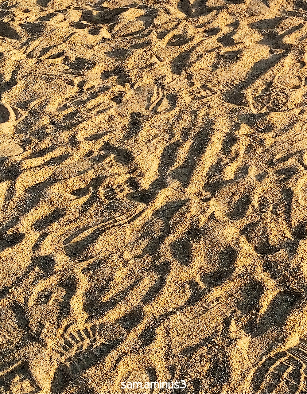 The Foot Prints