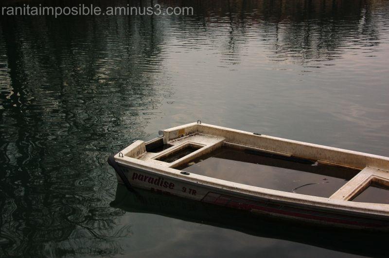 Sinking Paradise