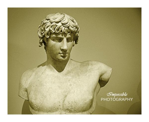 Greek Bust