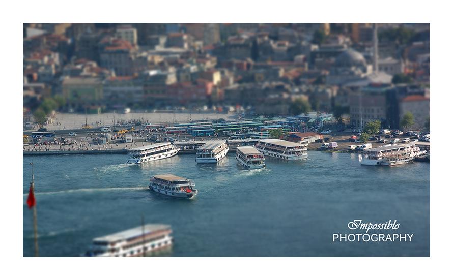 Ferries & Buses