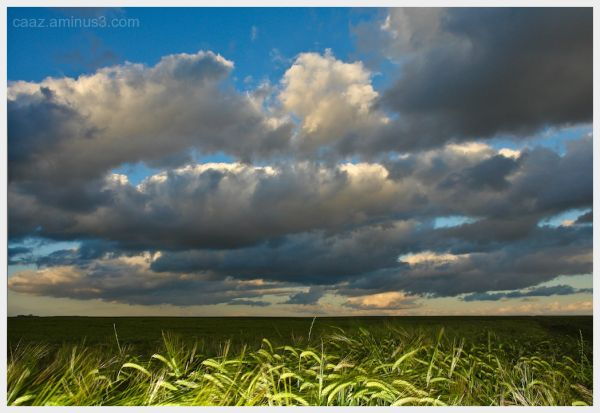 Armuña field with sky seeding of storm clouds