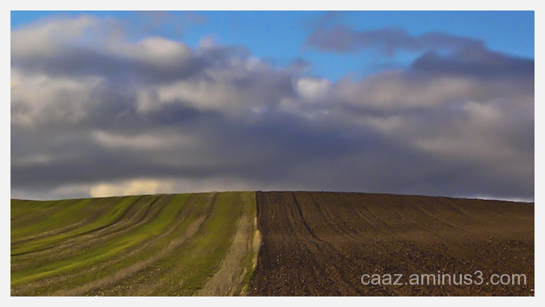 Arable land, planted and plowed, vs a fall sky