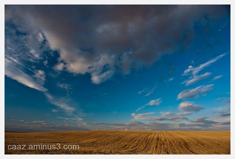Fields of Castlla in a summer day