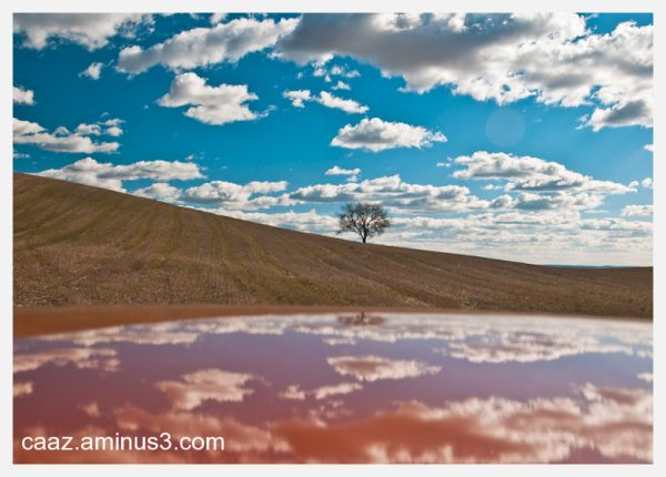 Reflexion of a landscape on the roof of the car