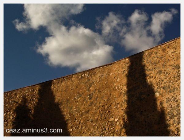Shadow on a wall of three cypress trees