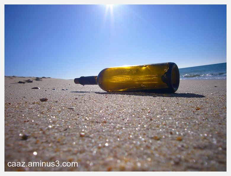 A bottle on the beach (a message of a castaway?)