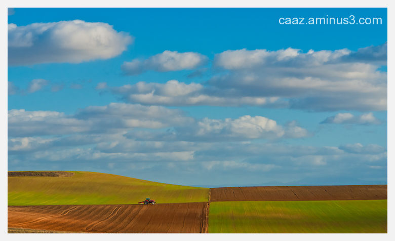 landscape of a tractor plowing the field