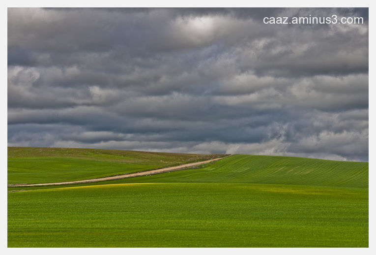 A footpath in the middle of Castilla