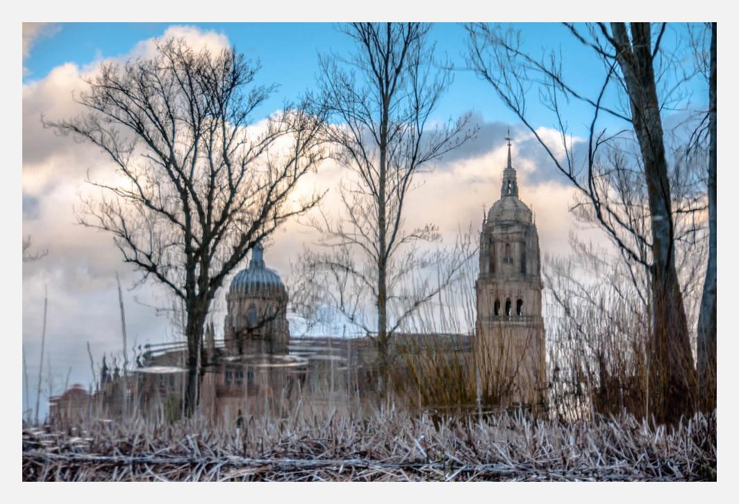 Reflection of Salamanca cathedral