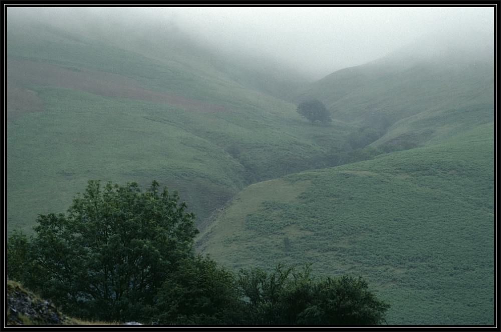 A foggy rainy day on the Black Mountains, Wales UK