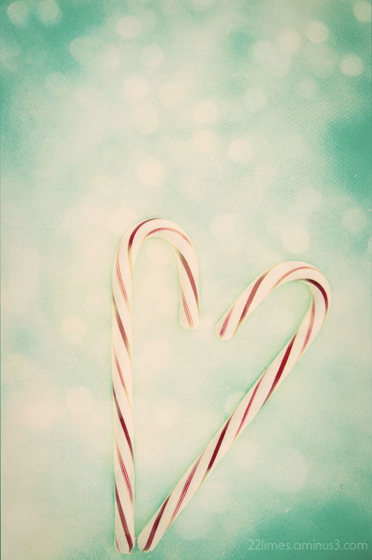 Candy Cane dreams....