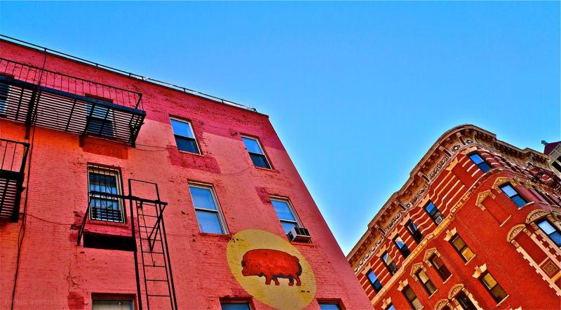 Colured walls in Soho New York city