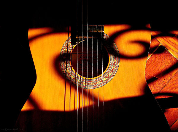 Guitar and shadow
