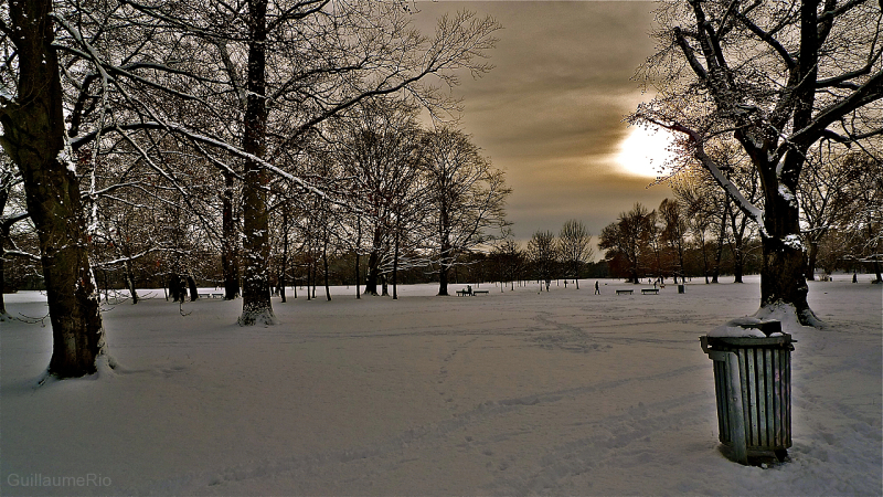 Englishgarden on winter