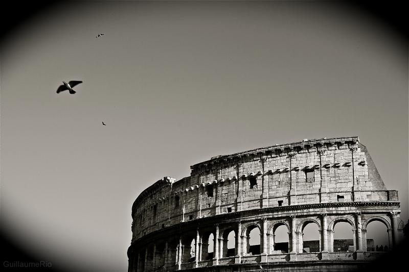 Coliseum Roma