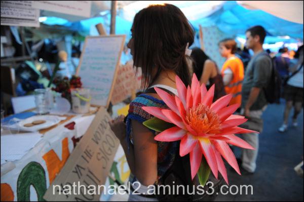 Back flower...