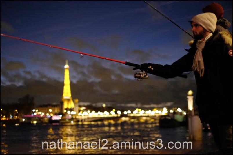 Fish and Seine...