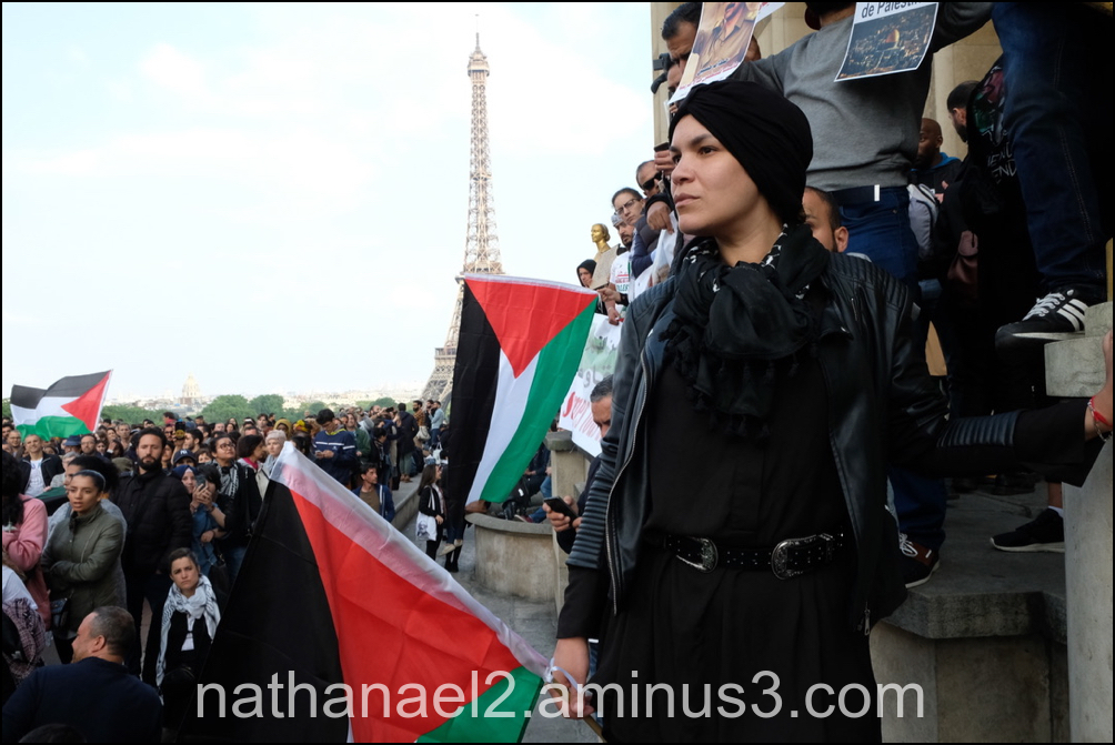 Gaza in Paris...