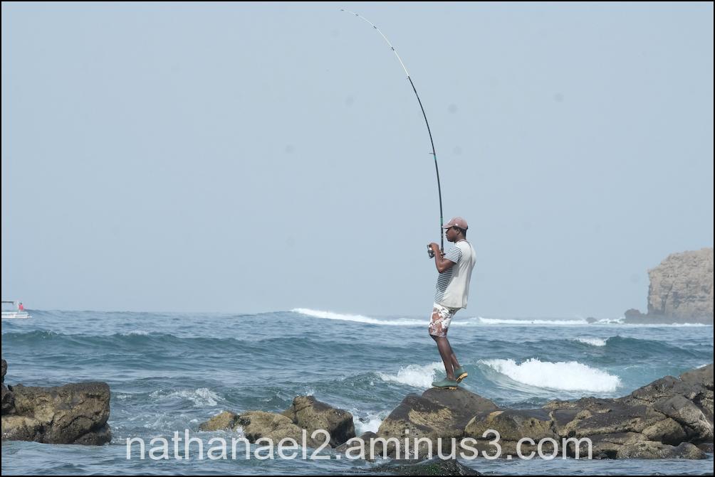 Fish and man...