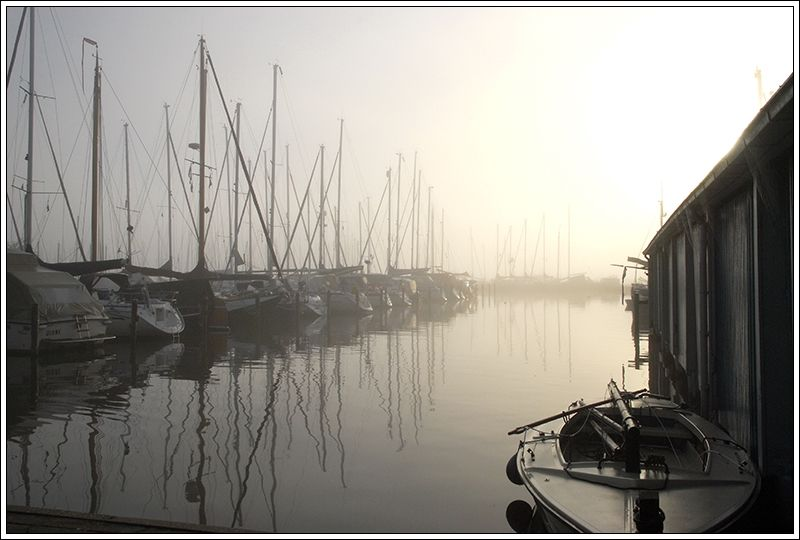 early morning at the marina