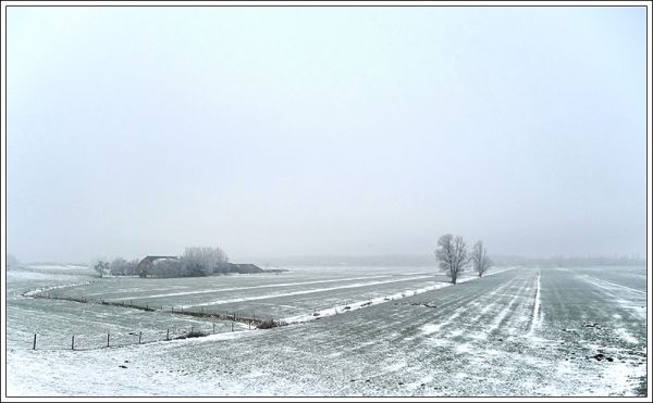 snow landscape near river Rhine