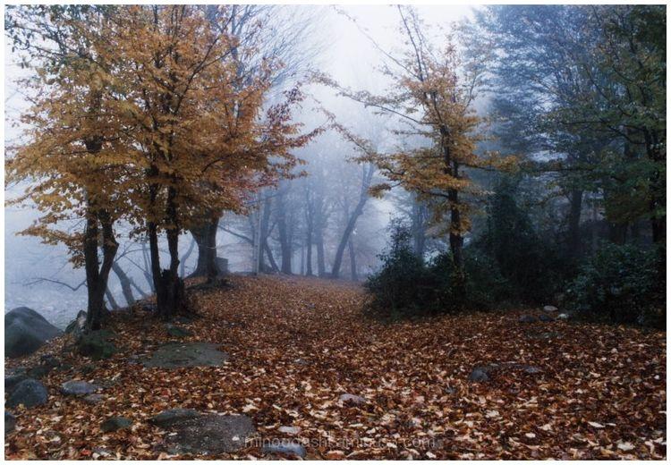 Minoodasht Autumn 2003 - پائیز مینودشت1382