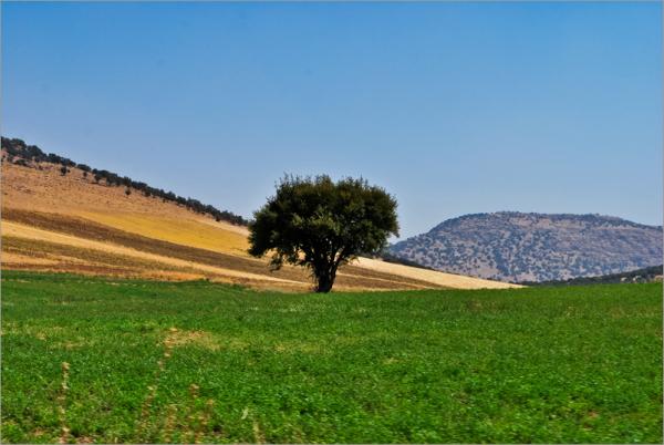 طبیعت خرم آباد لرستان