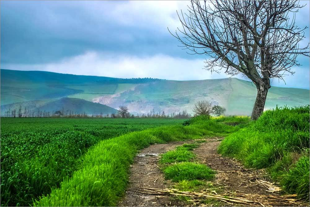 طبیعت استان گلستان